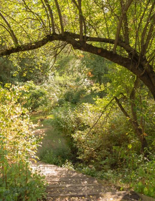 Spokane, Finch Arboretum